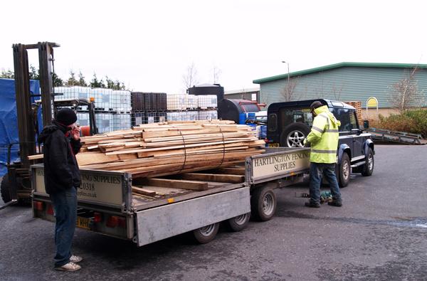 loading fire wood in trailer