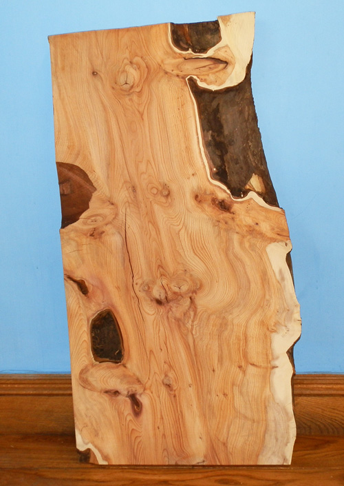 Yew and Sycamore Selected Boards / British Hardwoods Blog