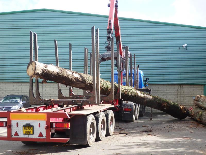 oak beams 10