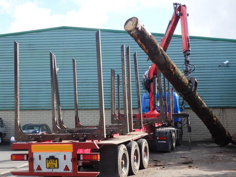 oak beams 11