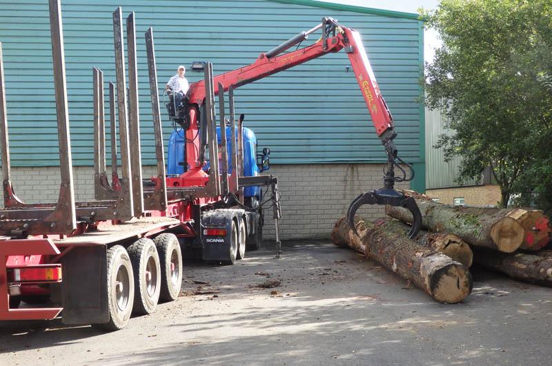 oak beams 12