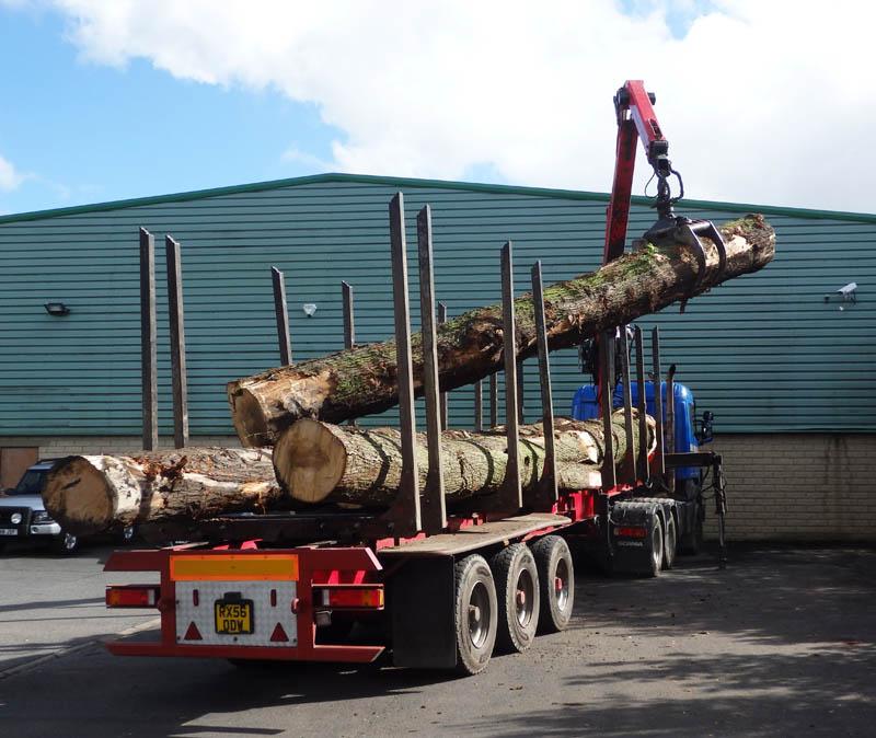 oak beams 6