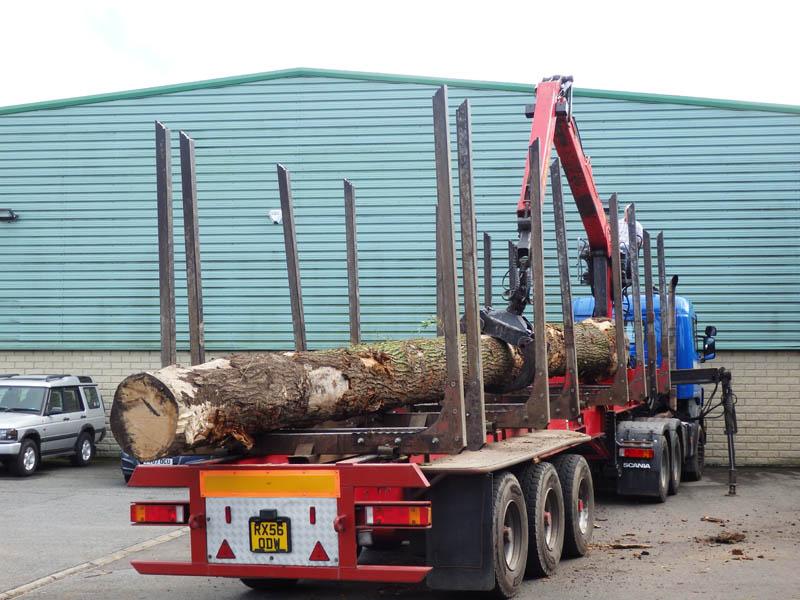 oak beams 8