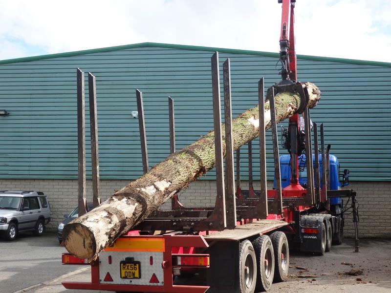 oak beams 9