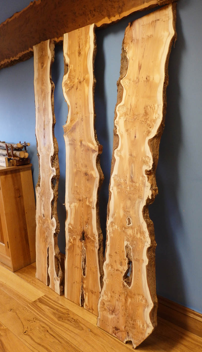 Three beautiful kiln dried English Yew Boards