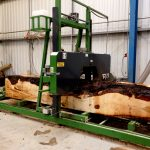 horse-chestnut-conker-log-being-cut-ripped-six