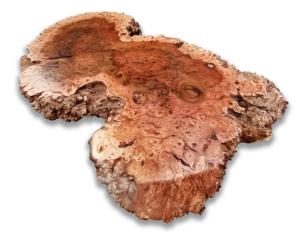 Beautiful burr elm boards from our Native Timber Shop